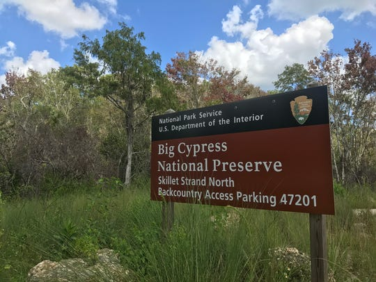Off-road vehicles access within Big Cypress National