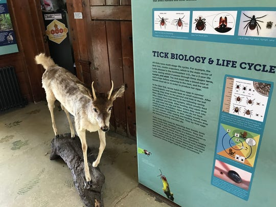 The Ticks and Lyme Disease display at the Cayuga Nature Center.