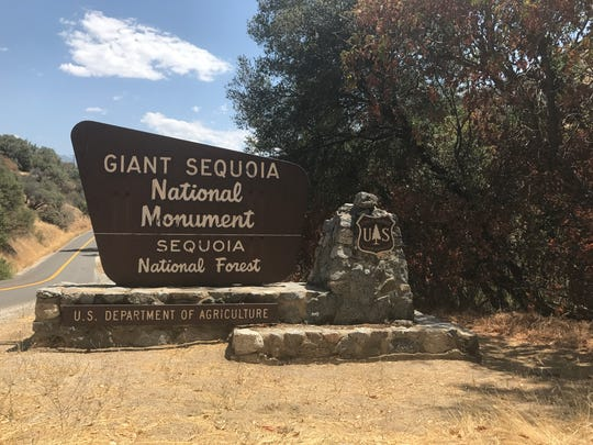 Concerned citizens of the Giant Sequoia National Monument and community members worked to improve the monument on Saturday, August 19. They also voiced their disapproval for recent policy moves which would reduce the monument by nearly 200,000 acres
