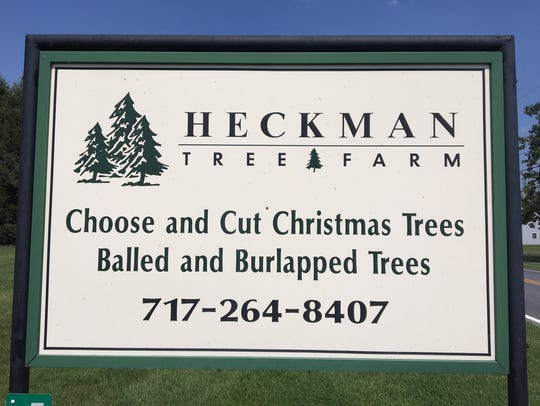 Heckman Tree Farm has been a source of Christmas trees