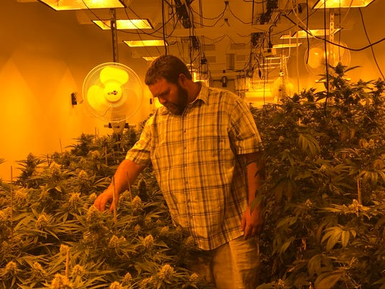 Ryan Booker, a founder of Ethnobotanica, checks out some of the grows.