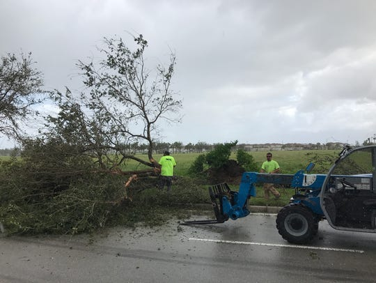 A crew works to clear downed trees from the main road