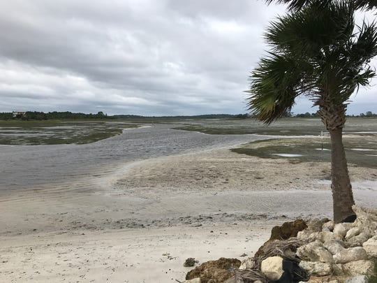 A nearly dry seabed at Shell Point on Sunday. Hurricane Irma's winds pulled water away from the shoreline as it approached the Big Bend.