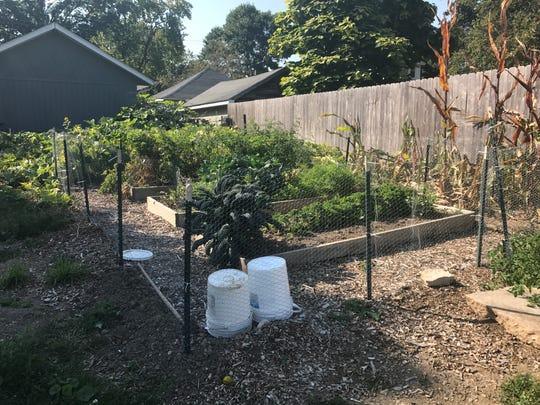 In a garden just southwest of his cafe, Scott Mattfeld grows an abundance of herbs, vegetables and fruits.