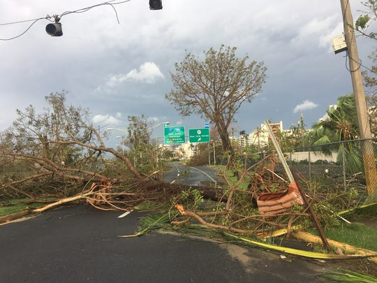 Streets around San Juan were clogged with downed trees