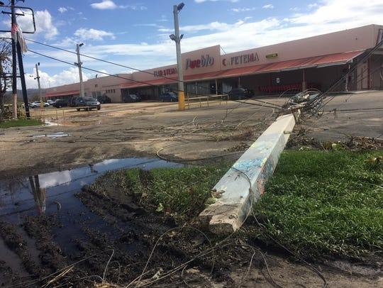 Electrical poles are knocked down all over Arecibo,