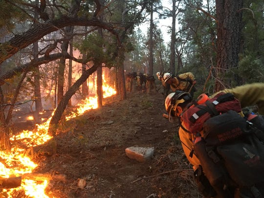 Forest Service Hotshots work a wildfire within national
