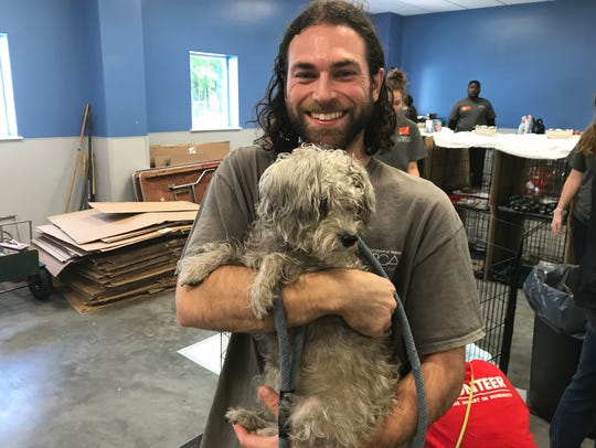 A volunteer with one of 33 dogs rescued from Puerto