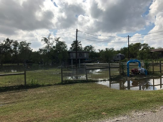 Some yards along County Road 73 were flooded Friday as water from the Nueces River rose.