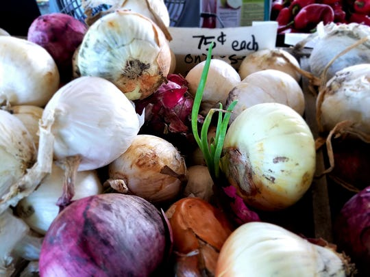 Reimann's farm is locally famous for their spring crop of big sweet onions. They last just like store onions, so now is the time to stock up for winter soups and stews.