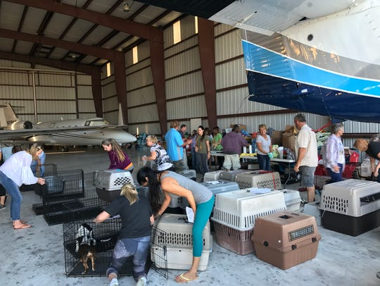 Volunteers collected at the Fort Pierce airport to