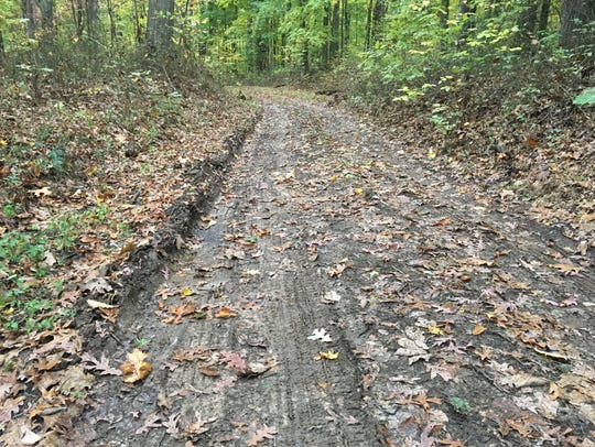 Tracks in the Yellowwood State Forest. Residents are