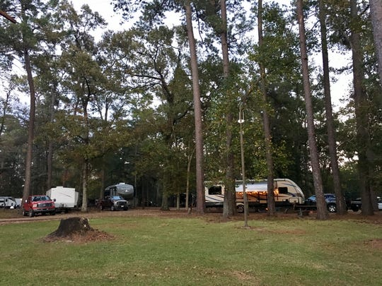 Sam Houston Jones State Park offers several options for overnight stays, from campsites for campers or tents to cabins.