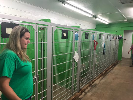 Samantha Gamble, director of the Pickens County Humane Society, in the animal shelter.