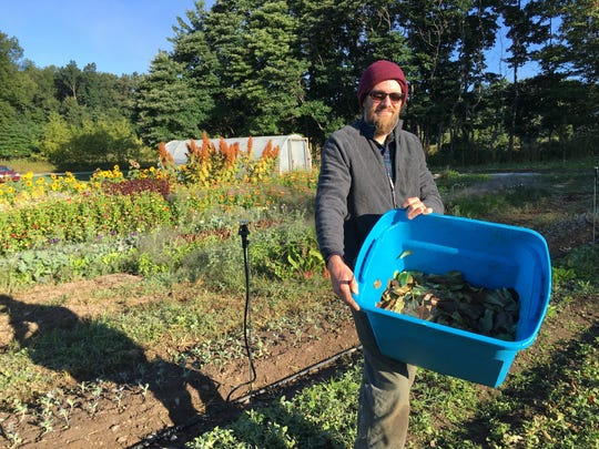Jason Skonieczny works his farm. He and his wife will bring veggies to the Milford pop-up market.