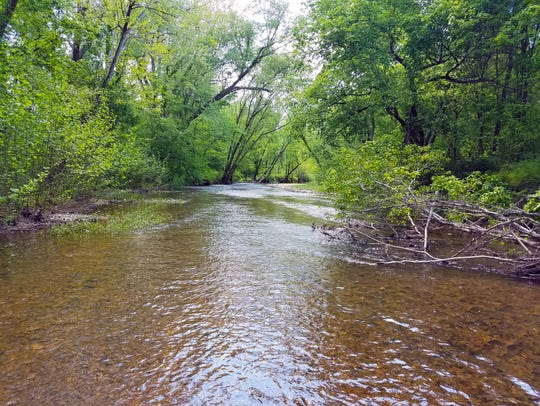 Hurricane Creek in Humphreys County with its fast-flowing