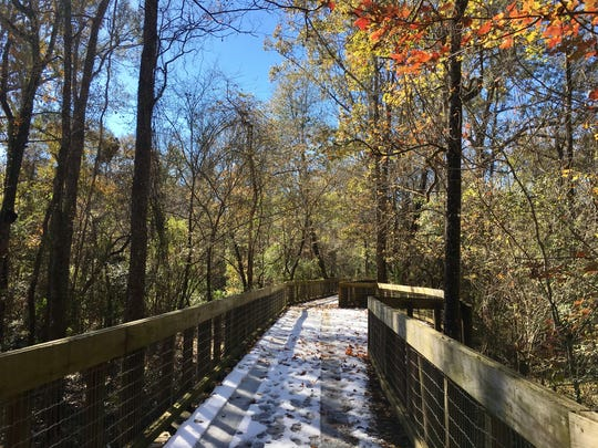 Tickfaw State Park's boardwalk trails were covered