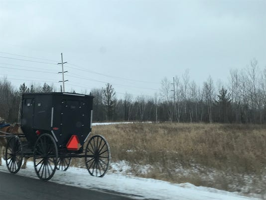 Horse-drawn buggy