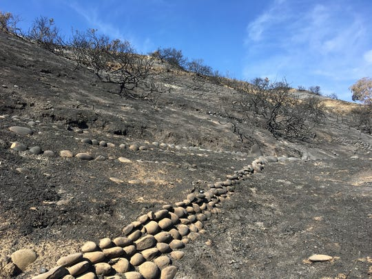 The Thomas Fire exposed several hundred feet of mission-era rock wall at the Ventura Botanical Gardens. The stones are being incorporated into the design of the restored gardens.