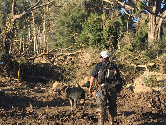 A canine search-and-rescue team works near San Ysidro