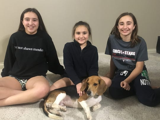 Fostering Bernadette – Isabelle, Elizabeth and Sarah Frazier are seen here with Bernadette, their foster dog.  She is a 3 year-old beagle found as a stray in Newburgh and picked up by Warrick County Animal Control. The girls' mom Julie observed that she is a loving, smart pup and gets along well with other dogs, big and small. She is available for adoption thru PAAWS No-Kill Animal Rescue.