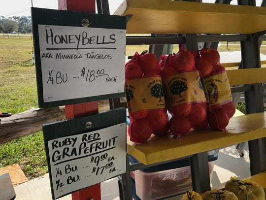 Ace High Farms offers fresh-picked citrus, including