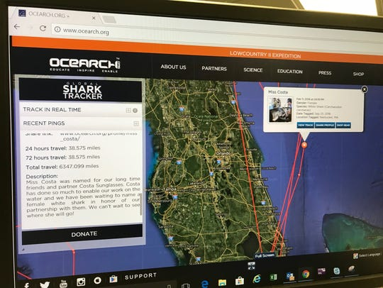 12-foot-5-inch great white pings off Brevard Coast.