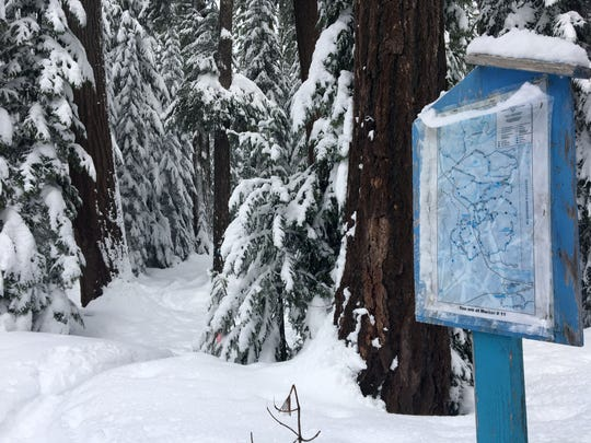 The snowshoe and ski trails beginning from Maxwell Sno-Park are marked with signs, including arrows, blue diamonds and other markings.