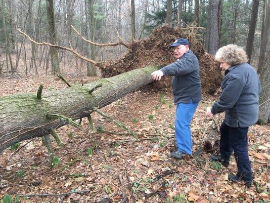 Edenville-Wind-Damage.JPG