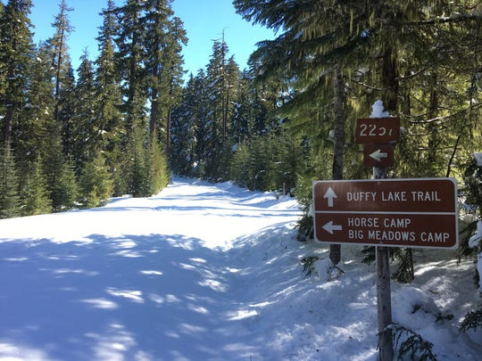 The snowshoe route to Fey Lake takes a sharp left turn here.