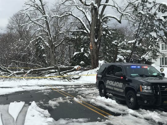 A patrol officer guards a downed tree that forced the closure of Morris Avenue in Denville. March 8, 2018.