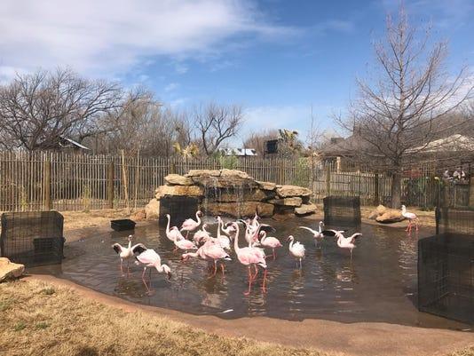 Abilene-Zoo-Nakuru-Lagoon.jpg