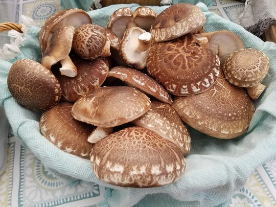 Mushrooms are available now at early spring tailgate