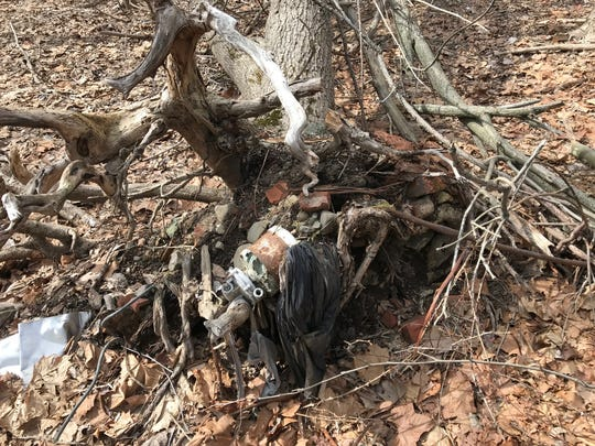 A motor is entangled in a dead tree's roots.