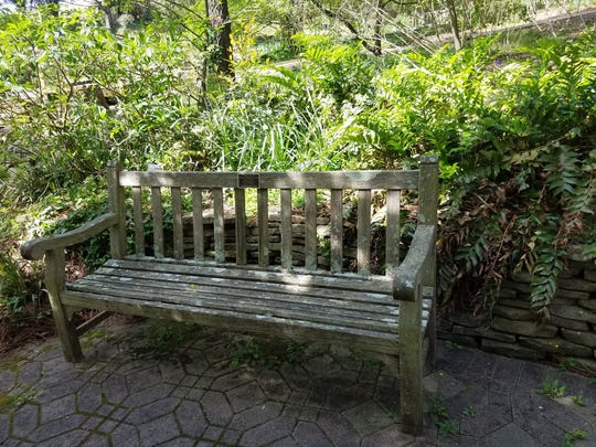 Jason Knapp's mother, Deborah Boogher, said she paid for a memorial bench for her missing son. It's in a quiet area of the South Carolina Botanical Garden, on the campus of Clemson University. (Angel M. Perkins photo)