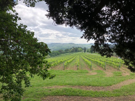 The tranquil view from a Tuscan hilltop brings peace