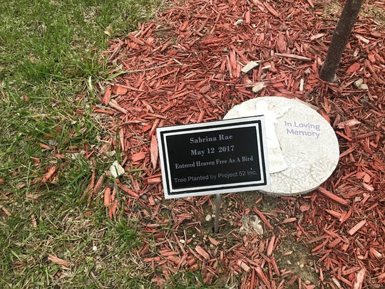 A plaque was placed at the bottom of a tree dedicated to Sabrina Ray, who was found unresponsive in her home one year ago.