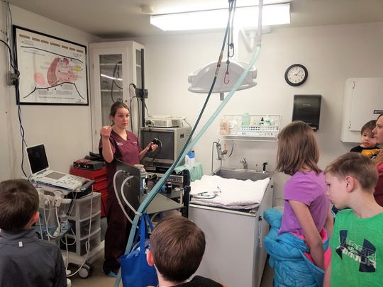 Students learned about veterinarian skills during a visit to the Ruidoso Animal Clinic.