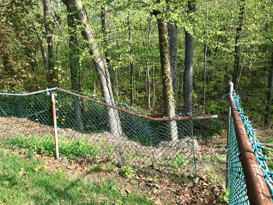 A black bear breaks down a fence on the way to a family's