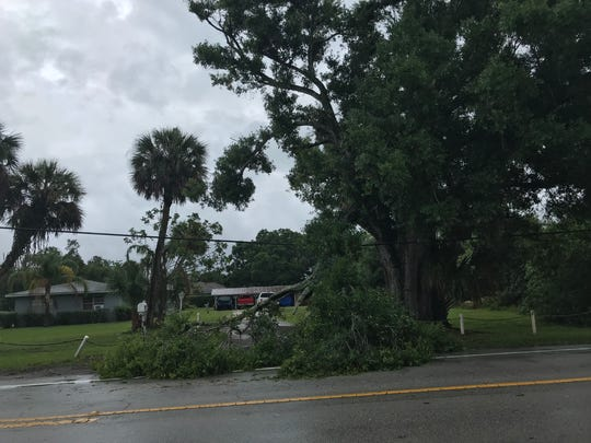 A tree branch fell on the road in the area of 58th