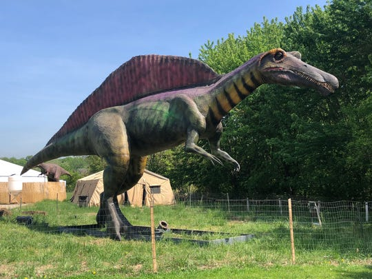 Mighty Spinosaurus is among the creatures you can see at Field Station: Dinosaurs.