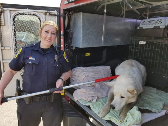 Green Bay Police Humane officer Mallory Meves seized