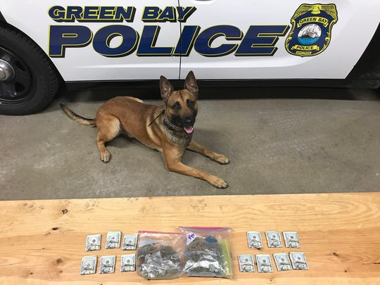 New police dog Pyro helped officers while responding to a report of domestic violence Tuesday, leading them to a backpack filled with marijuana, a scale and thousands of dollars in cash.
