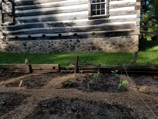 Manitowoc County Historical Society's Growing Gardeners series will utilize the heirloom gardens at the 60-acre Pinecrest Historical Village.