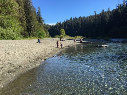 A sandy beach at Jedediah Smith Redwoods State Park