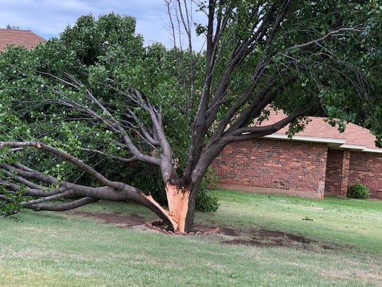 Storm damage off Canberra