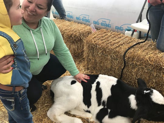 Harper Garcia and her mother Heather pet a calf during