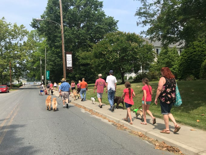 Several dozen pet owners and their four-legged and