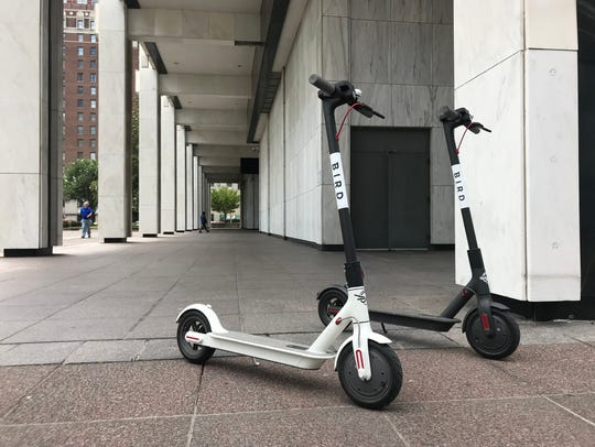 Two Bird electric scooters perch outside Memphis City