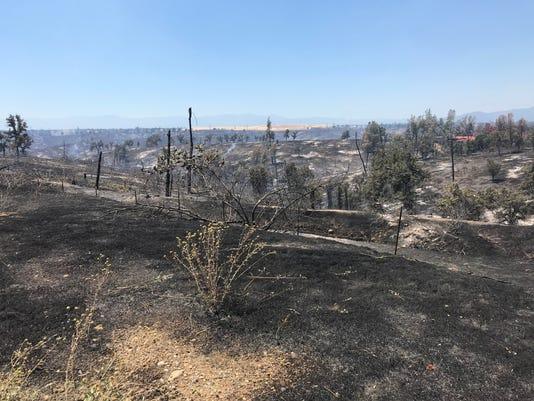 636655564613227001-burned-land.JPG